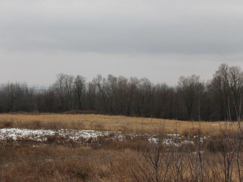 6+ Acres - Owner Financing Avail. : Oppenheim : Fulton County : New York