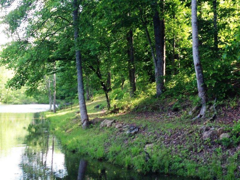 Deer Haven Lake : Carlton : Madison County : Georgia