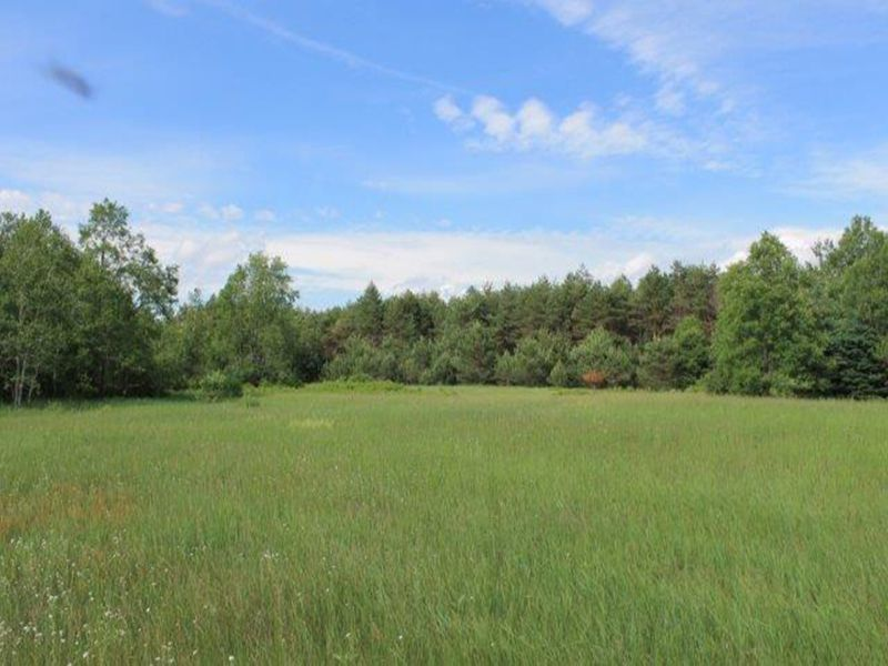 50+ Acres Bordering State Forest : Stockholm : Saint Lawrence County : New York