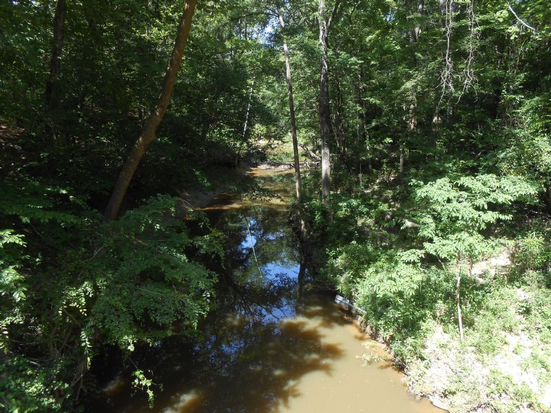 100 Ac. Estate / Recreation Tract : Harrisville : Simpson County : Mississippi