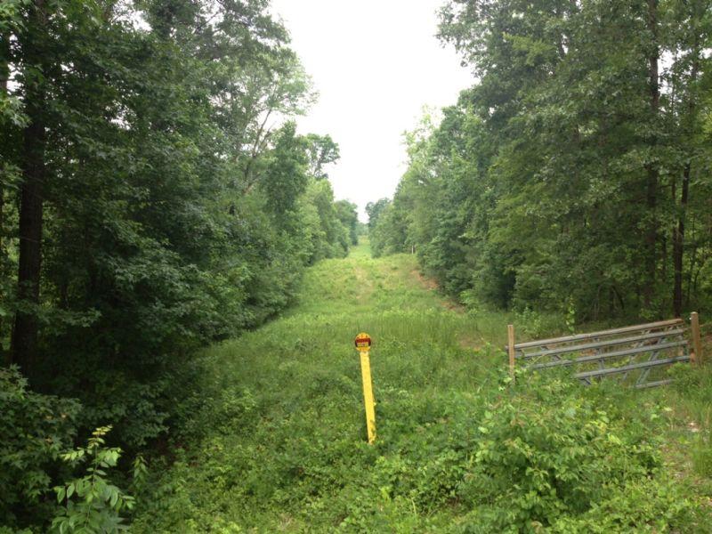 Cheap Hunting Tract Near Atlanta : Jackson : Butts County : Georgia