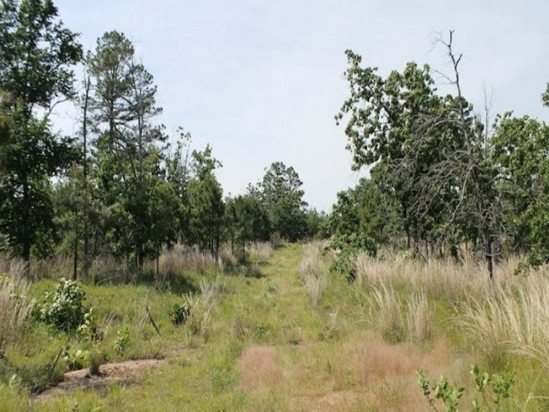 11.57 Acres Indian Ridge Ii : McAlester : Pittsburg County : Oklahoma