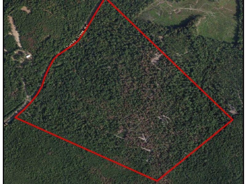Timber Creek | 207acs : Allentown : Wilkinson County : Georgia