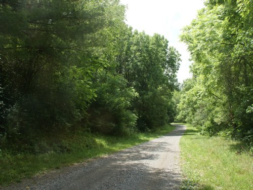 21.174 Acre Wooded Tract-Secluded : Elk Creek : Grayson County : Virginia