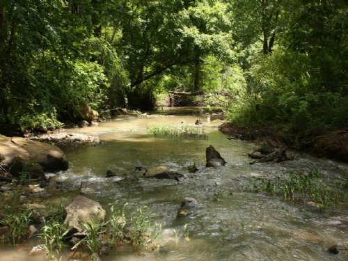 653 Acres - 25 Mins To Birmingham : Moody : Saint Clair County : Alabama