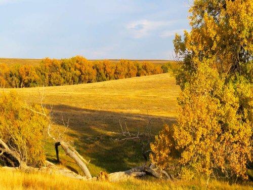 Wilson Creek Ranch : Agate : Elbert County : Colorado