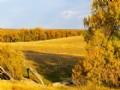 Wilson Creek Ranch