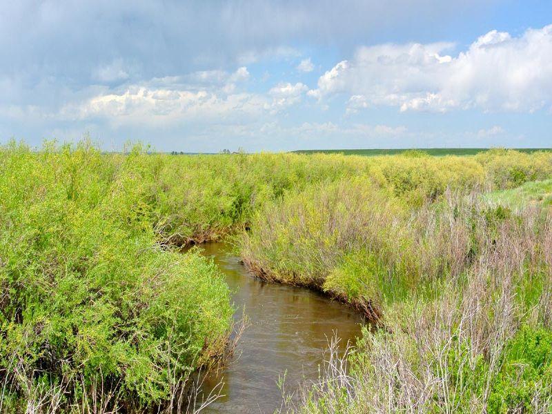North Spring Creek Ranch : Laramie : Albany County : Wyoming