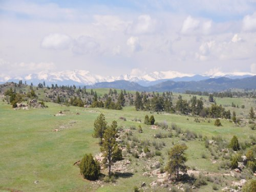 Laramie Foothills Reserve : Livermore : Larimer County : Colorado