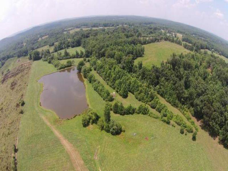 65+/- Acres Farm On Cragford Rd : Lineville : Clay County : Alabama