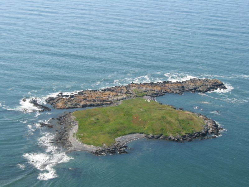 Ram Island Private 16 Acres : Machiasport : Washington County : Maine