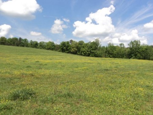 138+/- Acres : Attalla : Etowah County : Alabama
