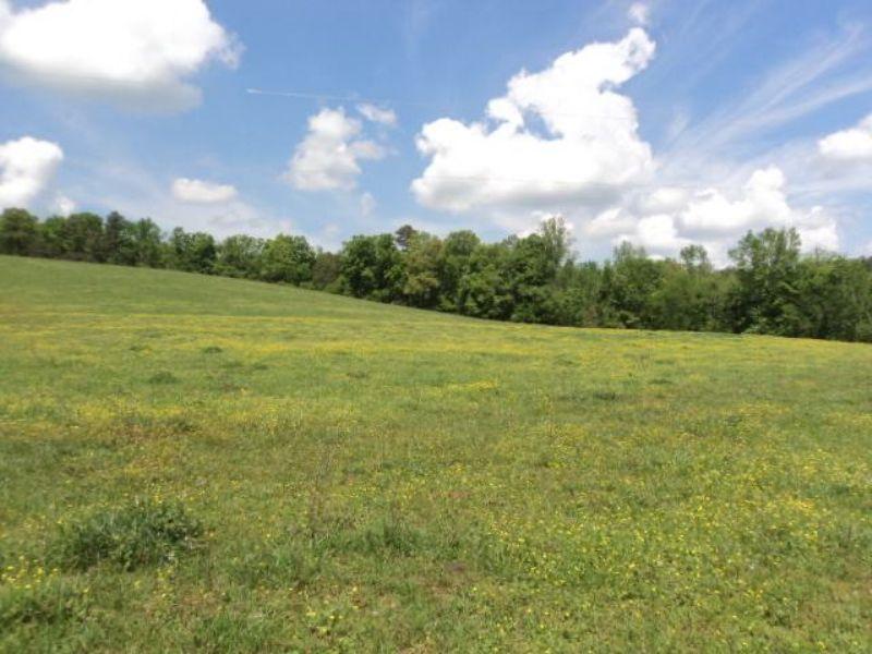 138+/- Acres : Attalla : Etowah County : Alabama
