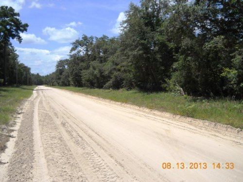 63+ Acres Close To Charles Springs : Live Oak : Suwannee County : Florida