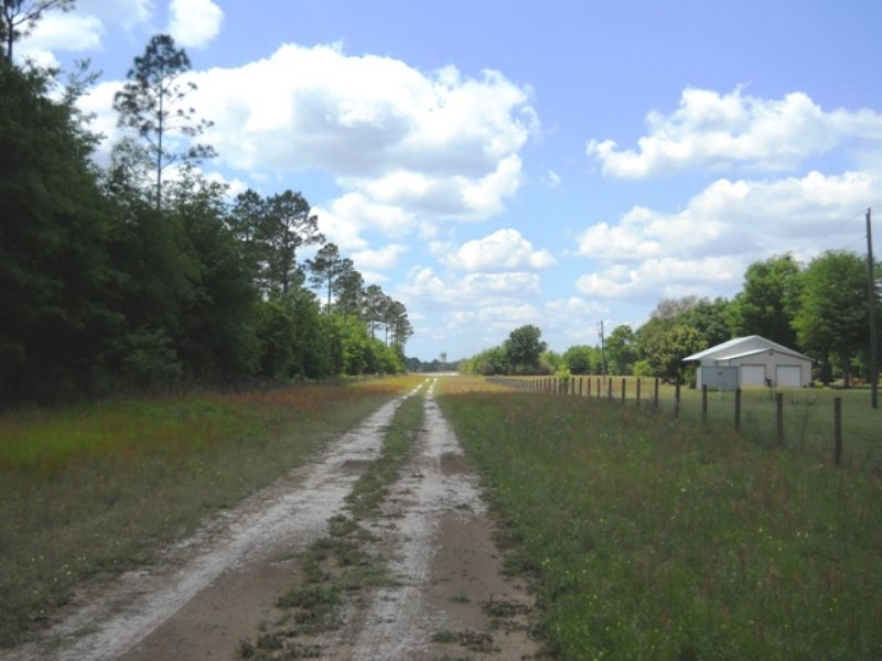 35+ Acres Cleared Land : Live Oak : Suwannee County : Florida