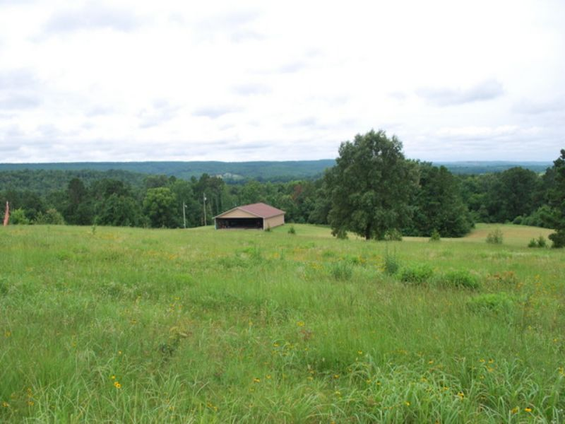 Price Reduced  69 +/- Acres : Bigelow : Perry County : Arkansas