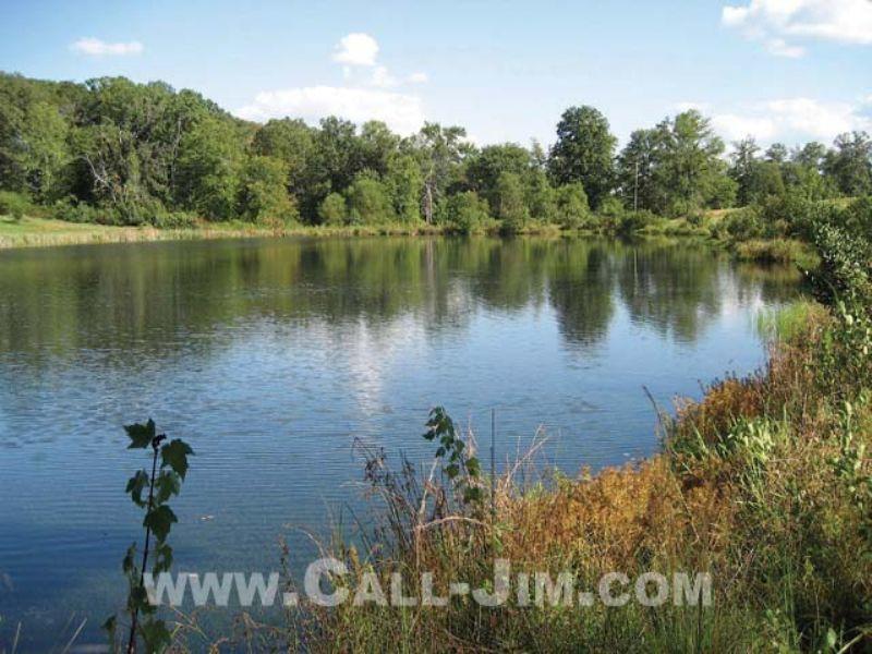 32 Ac. Pasture W/ Pond : Easley : Pickens County : South Carolina
