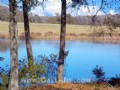 Country Acreage Parcels W/ Pond : Pendleton : Anderson County : South Carolina