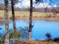 Country Acreage Parcels W/ Pond