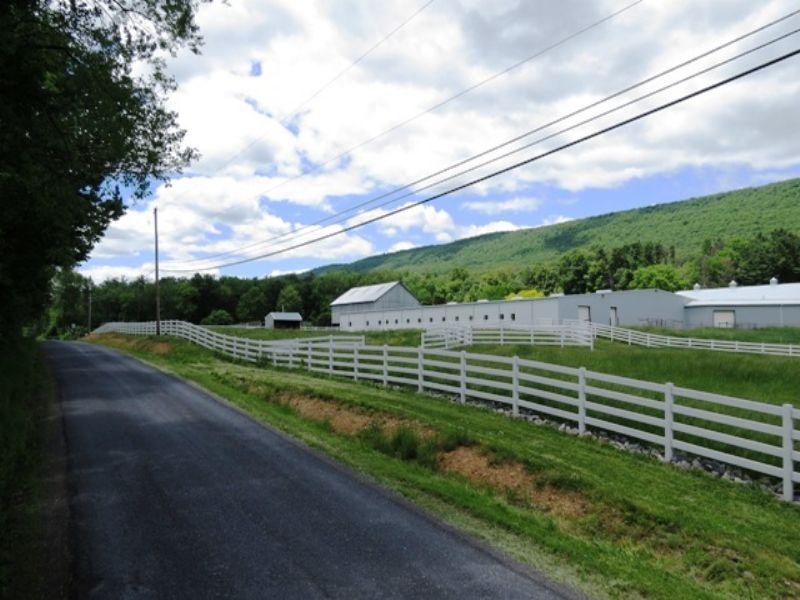 Premium Horse Ranch Auction : Weikert : Union County : Pennsylvania