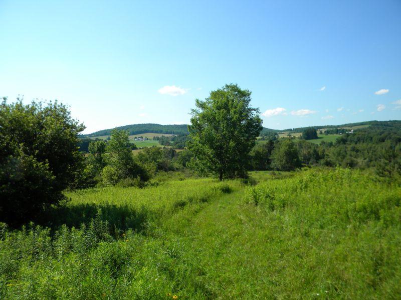 56+ Acres Near Greek Peak W/ Views : Virgil : Cortland County : New York