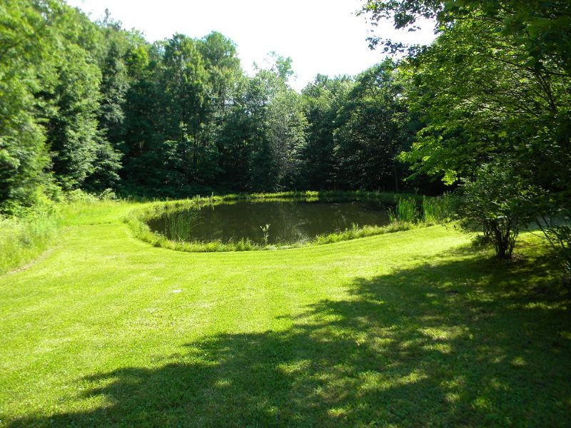 Land Bordered By State Forest Pond : Harford : Cortland County : New York