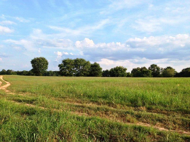 Danielsville Farm : Danielsville : Madison County : Georgia