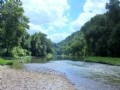 164 Ac On Banks Of Harpeth River