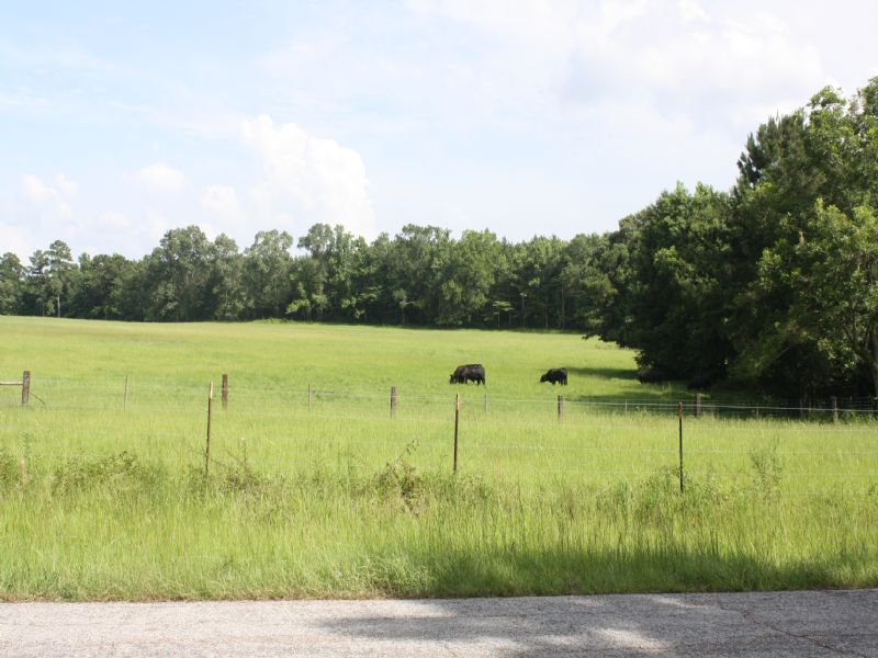 67 Acres : St. Francisville : West Feliciana Parish : Louisiana