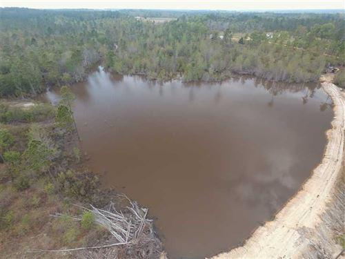 17 Acres With Pond : Lyons : Toombs County : Georgia