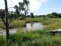 Medicine Creek Wildlife Retreat