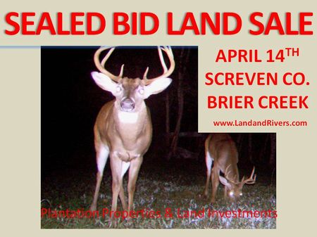 Sealed Bid Land Sale, April 14th : Sylvania : Screven County : Georgia