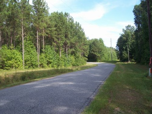 510+/- Acres Hunt & Fish Paradise : Goodwater : Coosa County : Alabama