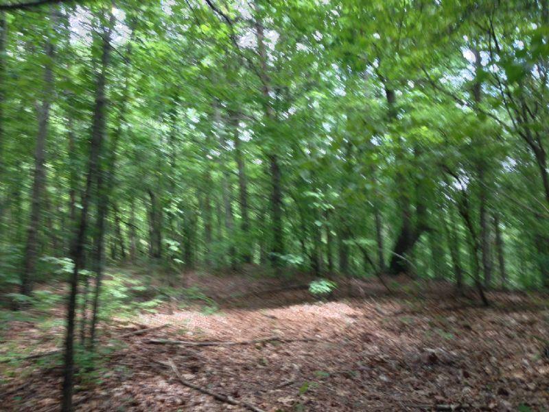 Sandy Clay North Tract : Pickens : Pickens County : South Carolina