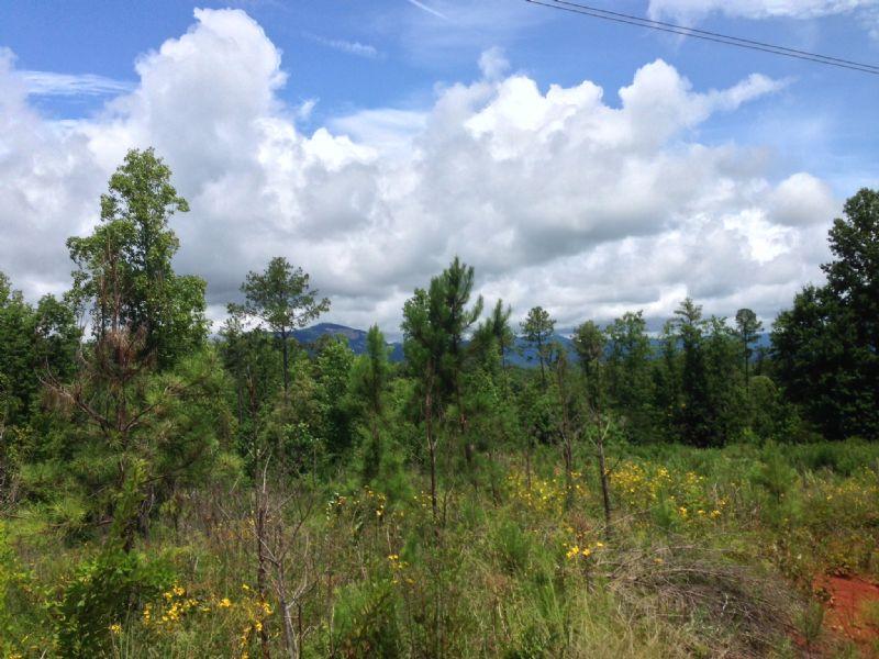 Grassy Knob North Tract : Pickens : Pickens County : South Carolina
