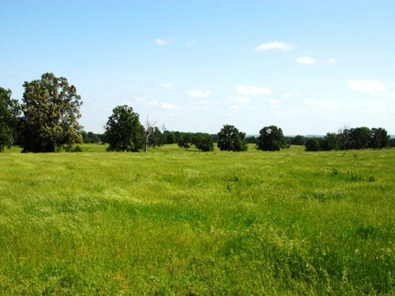 959 Acre Cattle Ranch : Mount Vernon : Faulkner County : Arkansas