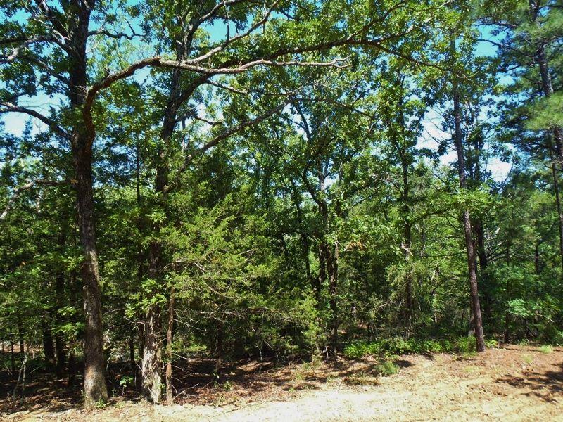 Rubicon Ridge Tract 4 : Clayton : Pushmataha County : Oklahoma