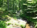 47 Acres W/springs And Creek