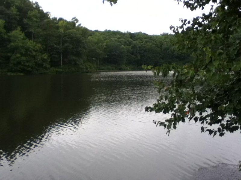 Loblolly Lake Tract : Pamplin : Prince Edward County : Virginia