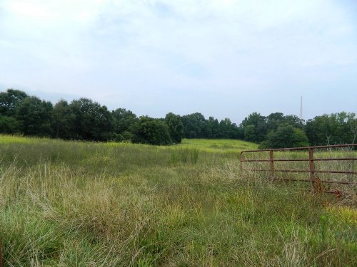 112 Ac Cattle / Horse Farm : Crawford : Oglethorpe County : Georgia