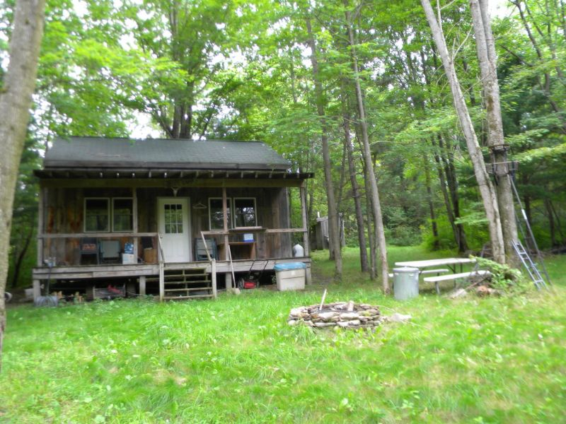 54 Ac. W/ Cabin - Excellent Hunting : Brooktondale : Tompkins County : New York