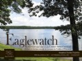 Eaglewatch -  23 Lots At Auction