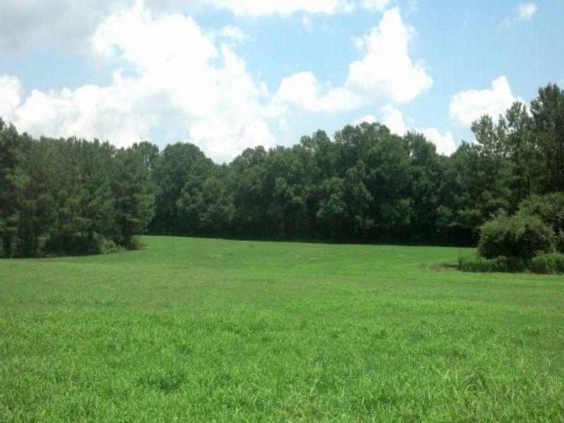 Farmland / Recreational : Carnesville : Franklin County : Georgia