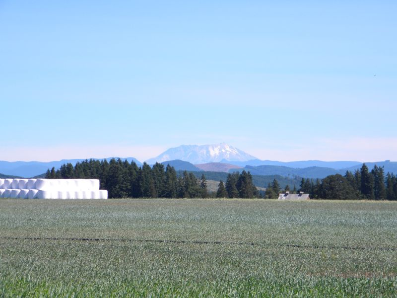194 Acre Farm Close To I-5 : Toledo : Lewis County : Washington