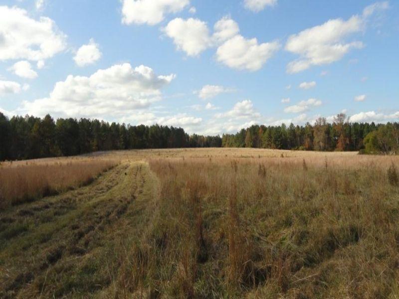 Mount Moriah Farm : Greenwood : Greenwood County : South Carolina
