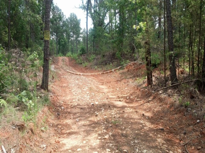 Lowndesville Tract : Lowndesville : Abbeville County : South Carolina
