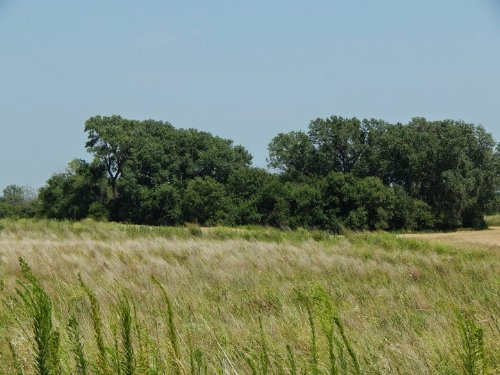 Trostle 80 : Murdock : Kingman County : Kansas