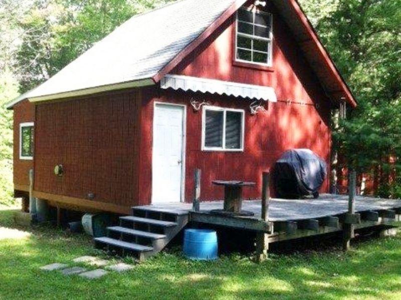 5.9 Acres & Cabin Near Keuka Lake : Pulteney : Steuben County : New York