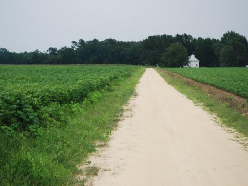 Nice Large Farm : Rowland : Robeson County : North Carolina