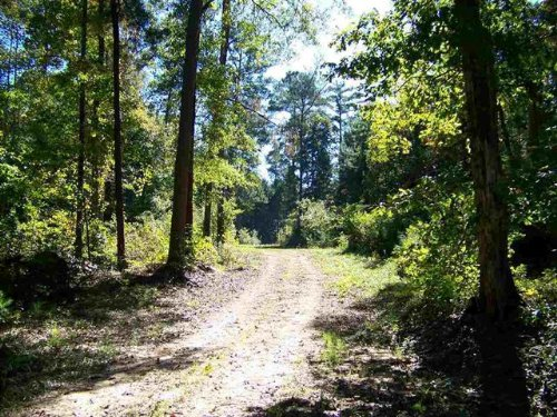 438 Acres Bullard Road : Jeffersonville : Twiggs County : Georgia